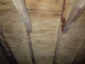 Attic mold after